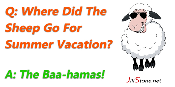 Sheep Vacation Joke